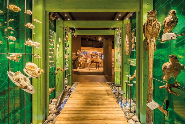 grønn portal i TRÅKK