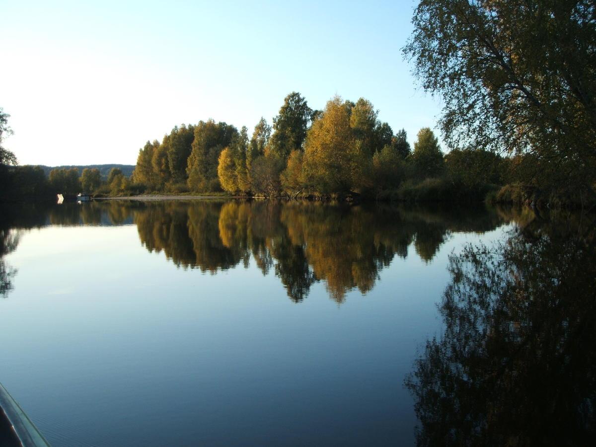 Deltaområdet Øyeren med trær og vann. (Foto/Photo)