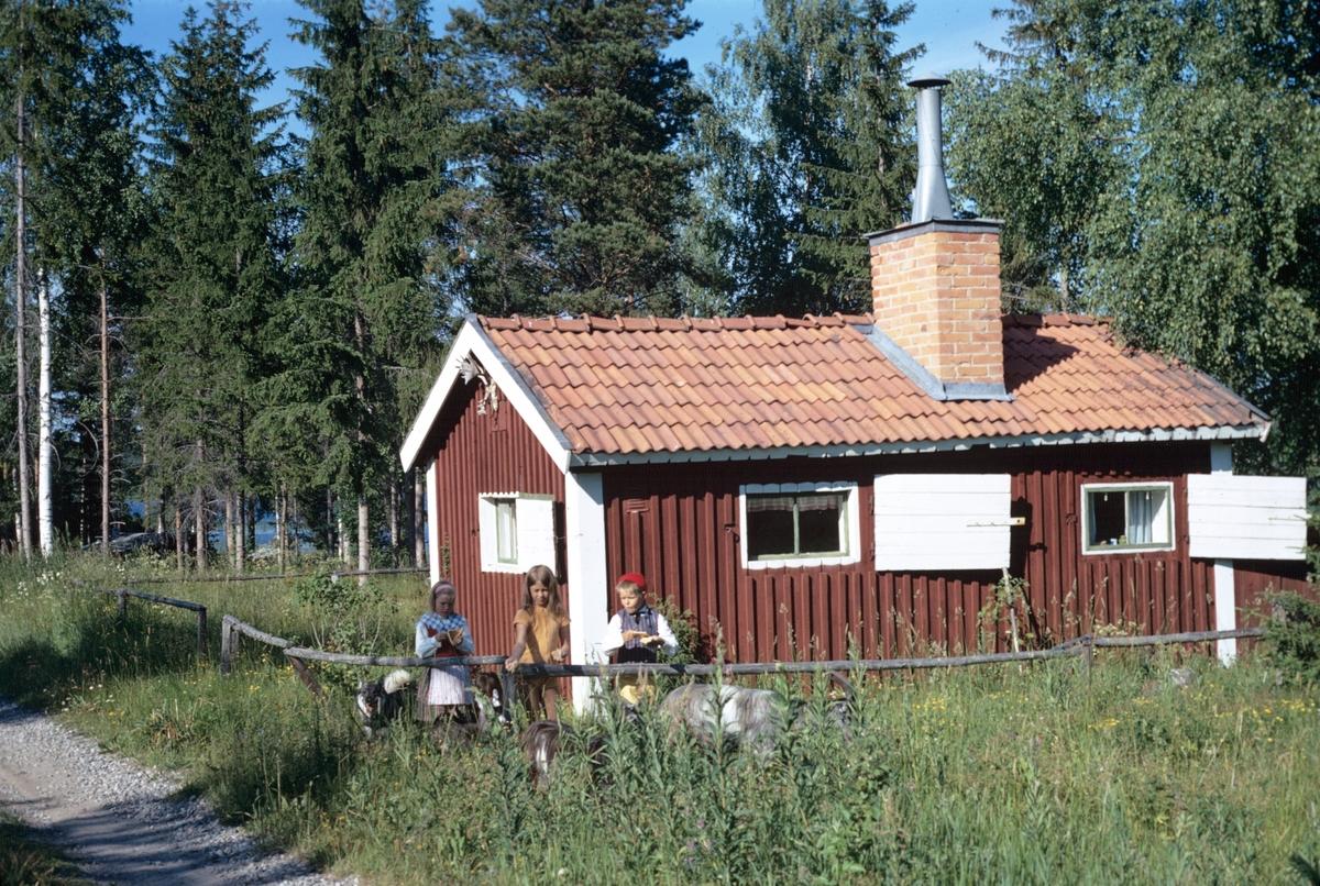 Sommarstuga i Trödjefjärden
