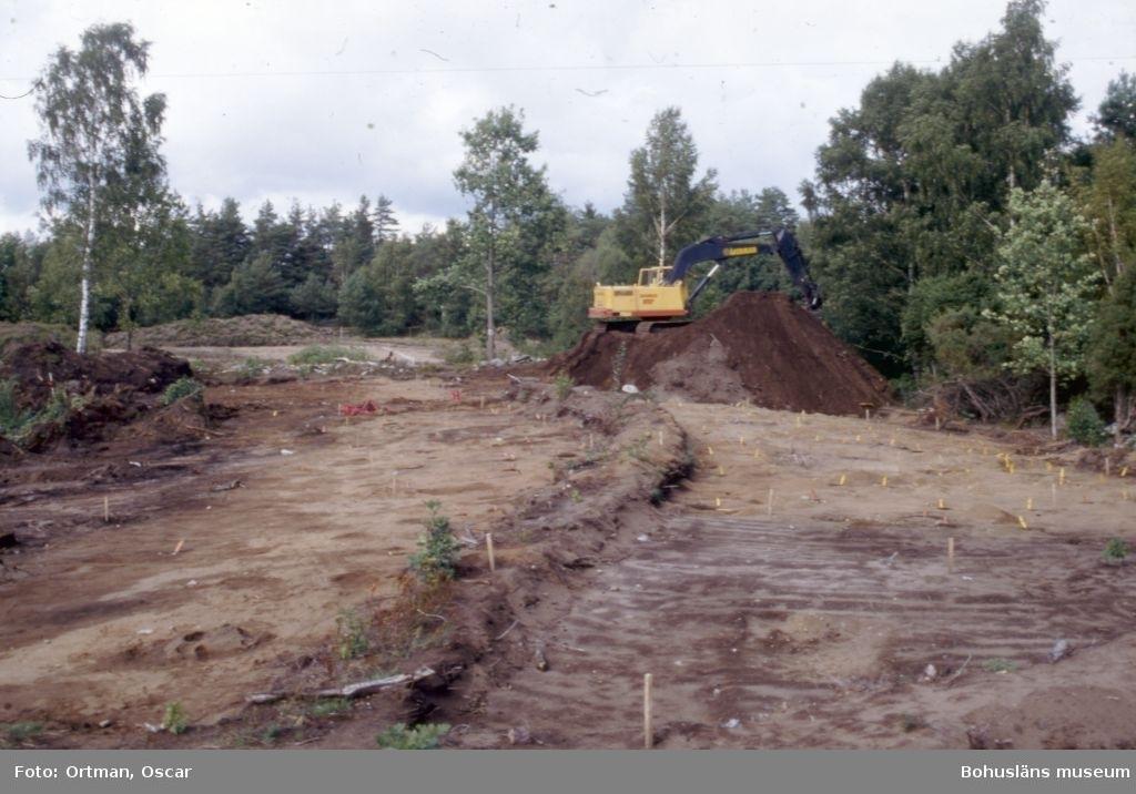 Norum 164, mellersta gården uppflärpad norra gården i bakgrunden Fotograferat från söder