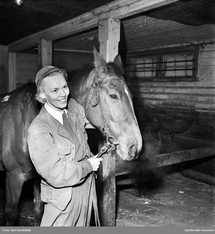 Carin Steffensson, en ung kvinna håller en häst inne i ett stall.