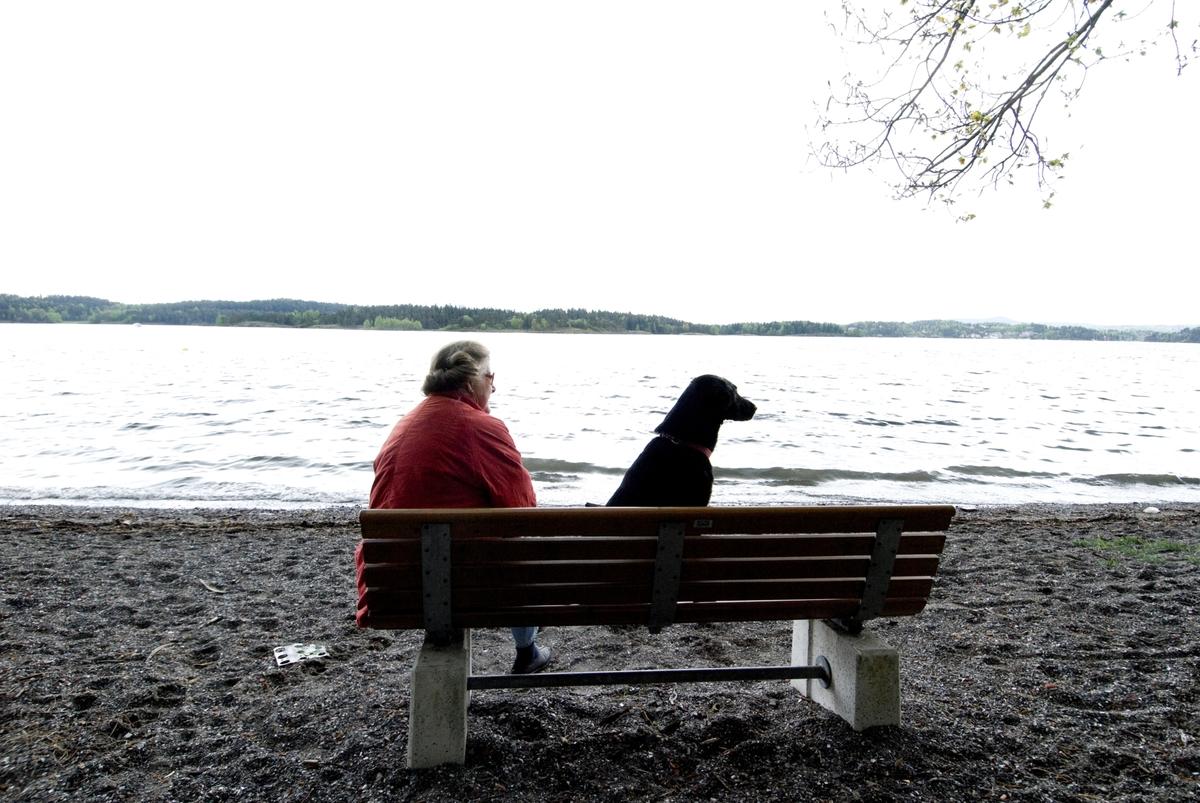 Hunden Chico på tur sitter sammen med sin eier på en benk ved vannet.
