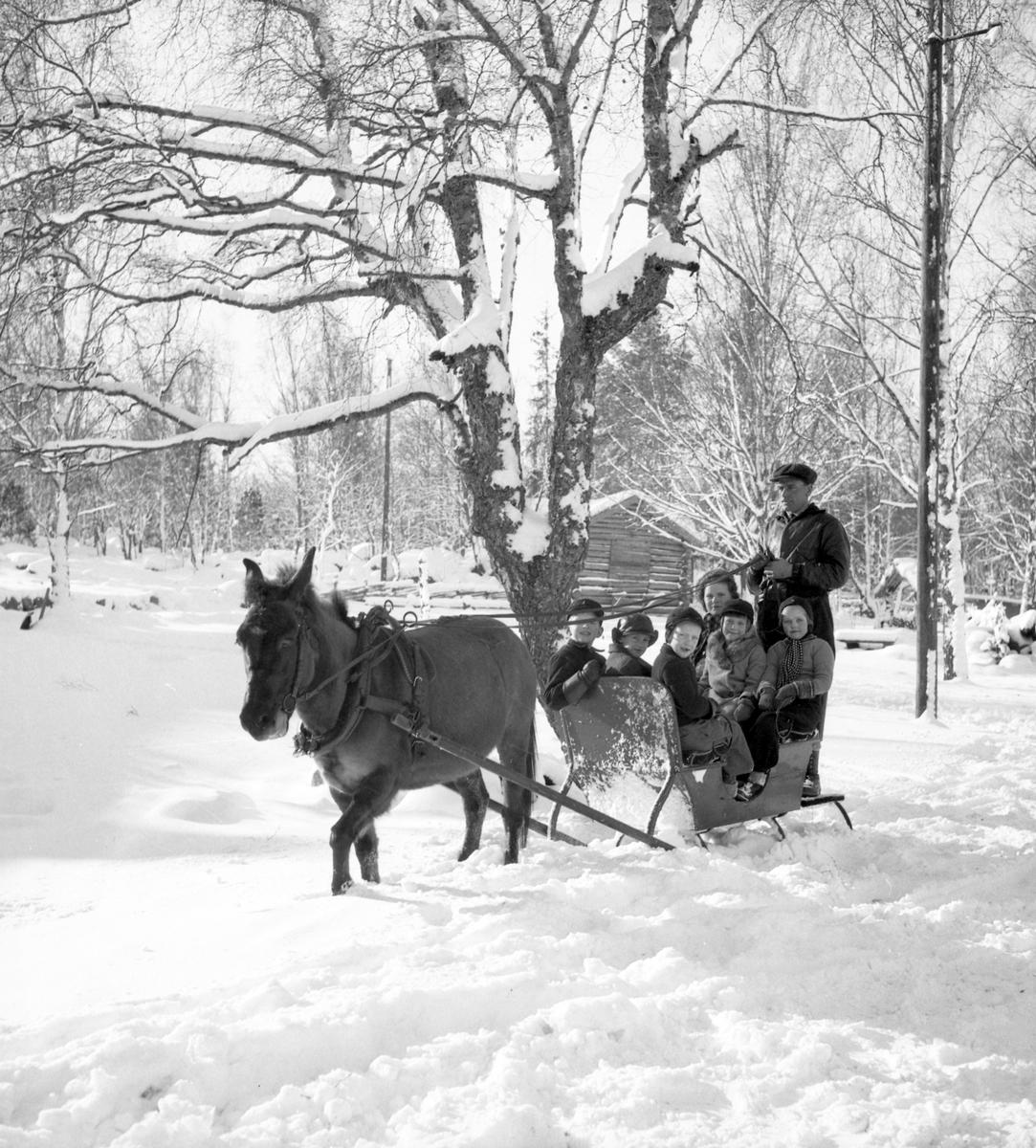 Furuviksparken invigdes pingstdagen 1936.  Vinterskoj i snön
