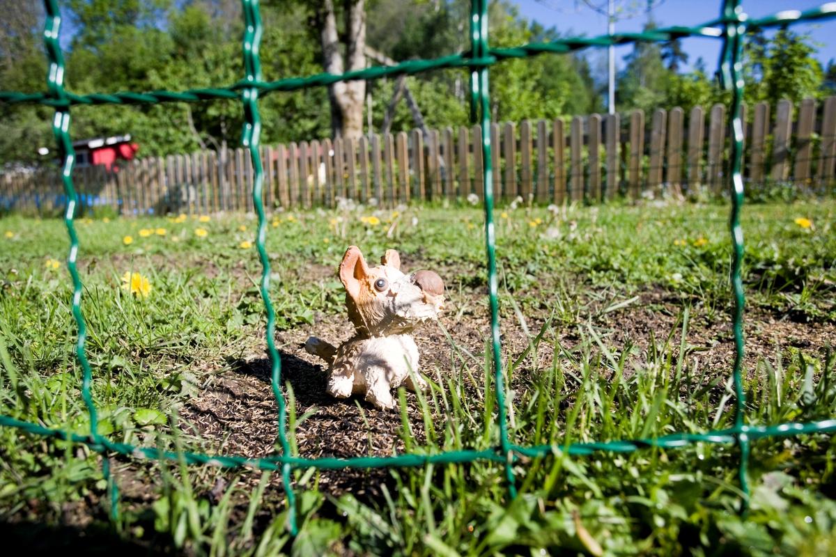 Hjemme hos hunden Emmy. En hundeleke i hagen.