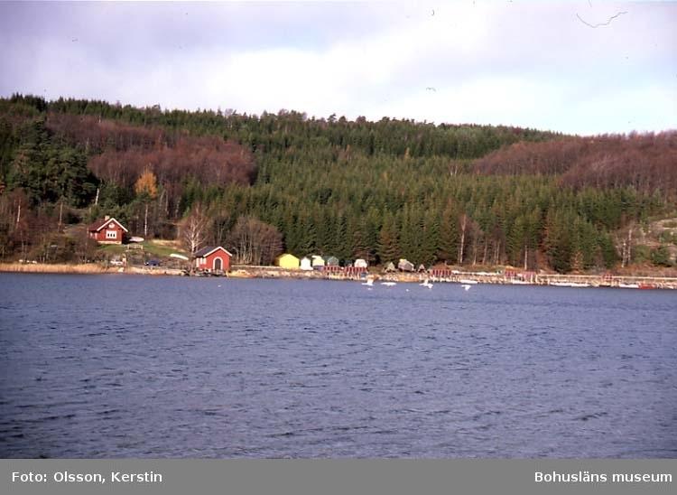 """Text på kortet: """"Vadholmen in mot Holma brygga. Nov -86""""."""