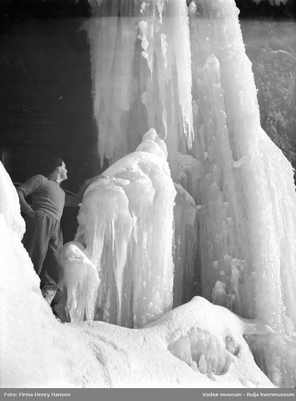 Vadsø mai 1951. Bildet er tatt i Tomaselvdalen, vest for Vadsø. Isporten.