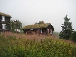 Østerdalsstue