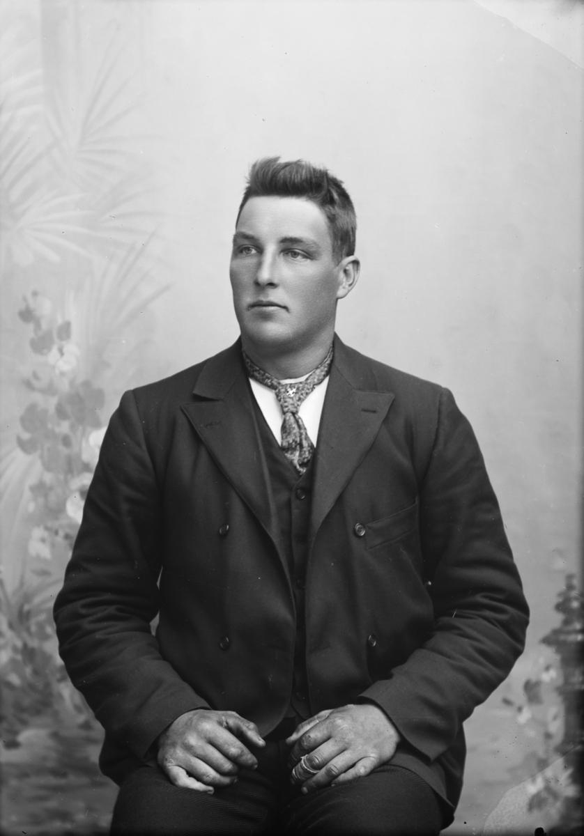 Portrett av Sigurd Johansen.