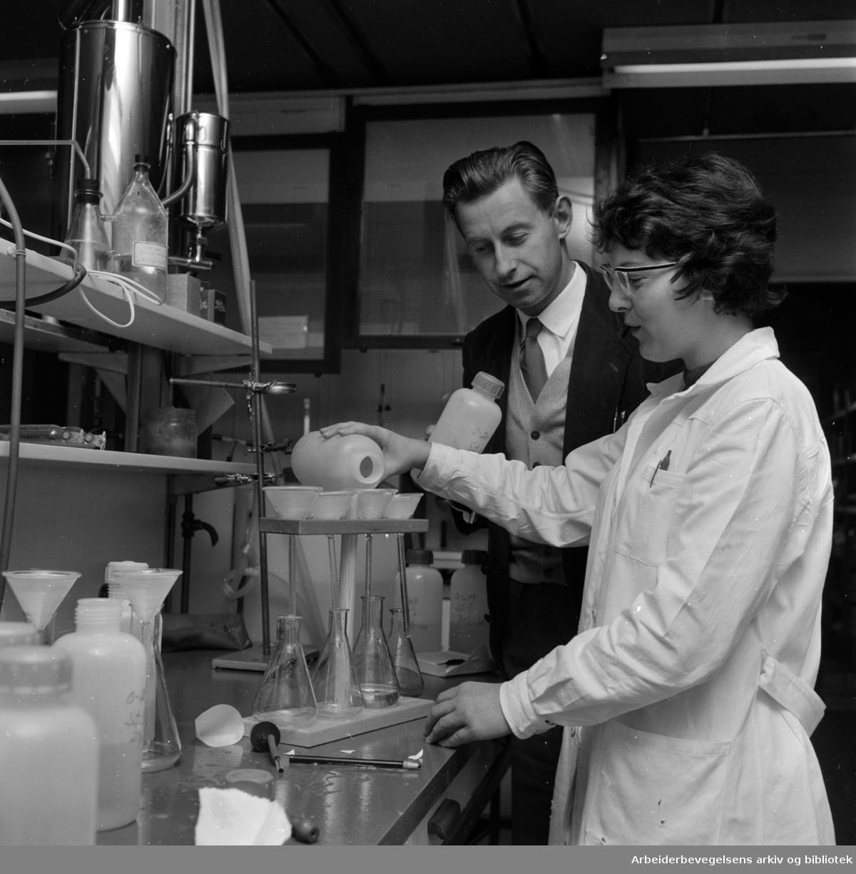 Blindern: Vannforskningsinstituttet. Fra laboratoriet..Oktober 1960