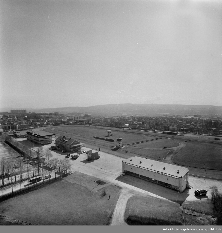 Bjerke travbane. Utsikt fra hybelbygget. April 1973