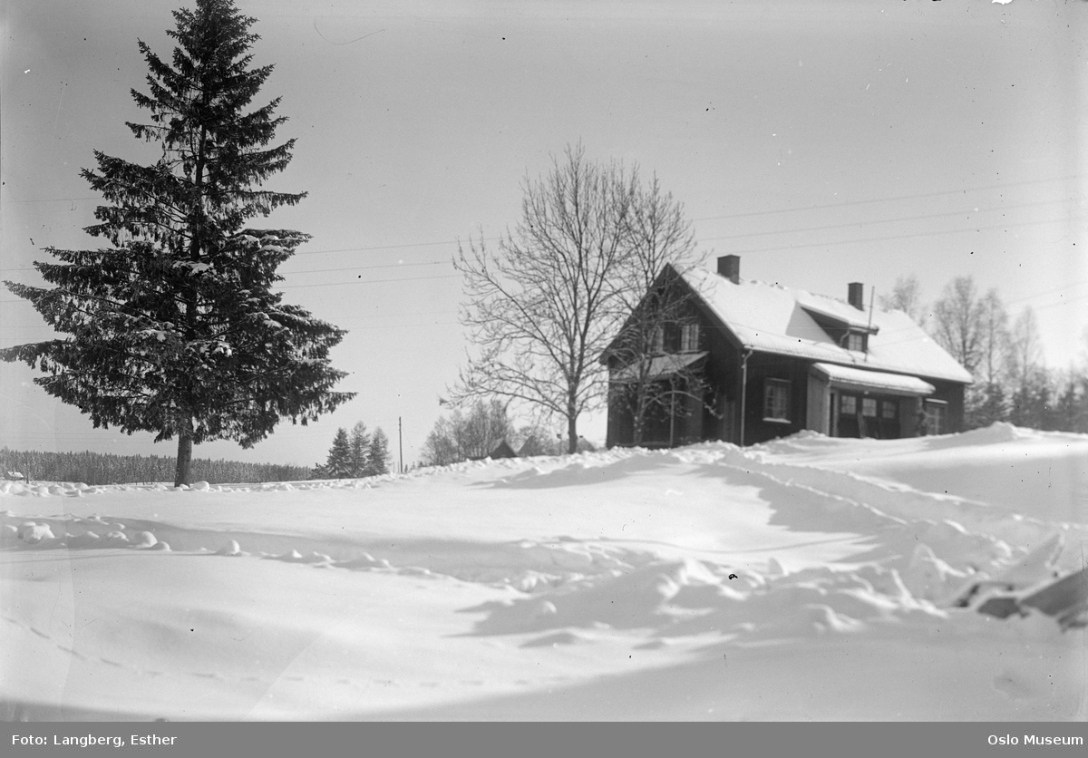Sutterhol gård, bolighus, kulturlandskap, snø