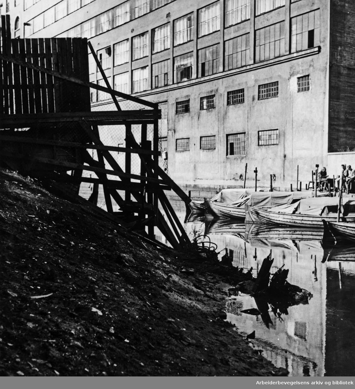 Akerselva, Vaterland. August 1961