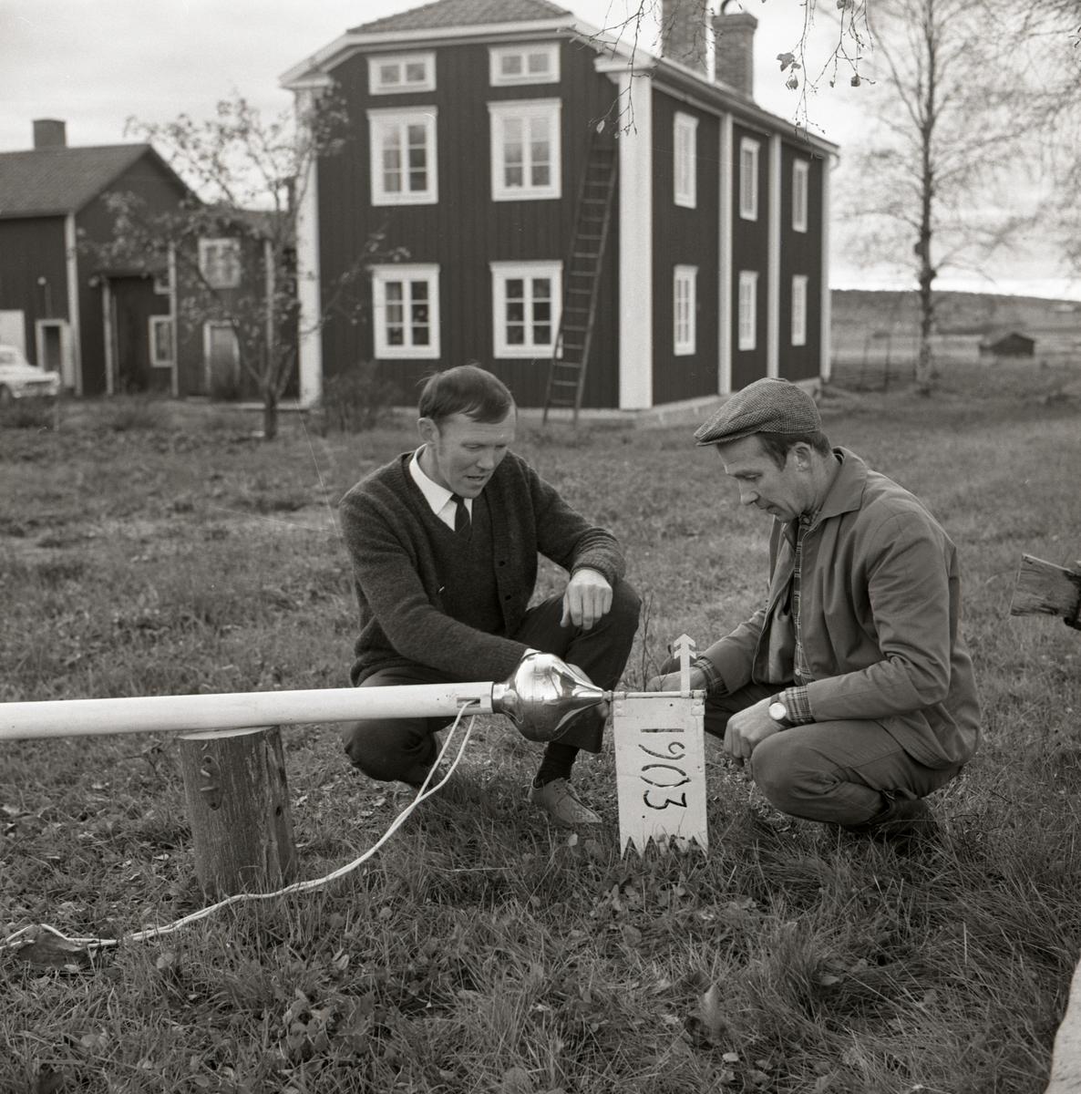 Två män sätter fast en vindflöjel i toppen på en flaggstång vid gården Sunnanåker, 1967-68.