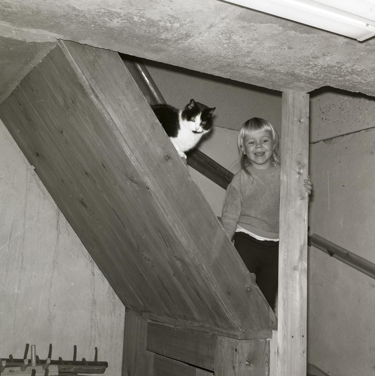I en källartrapp vid gården Sunnanåker står ett glatt barn och bredvid barnet sitter en katt, 1967-68.