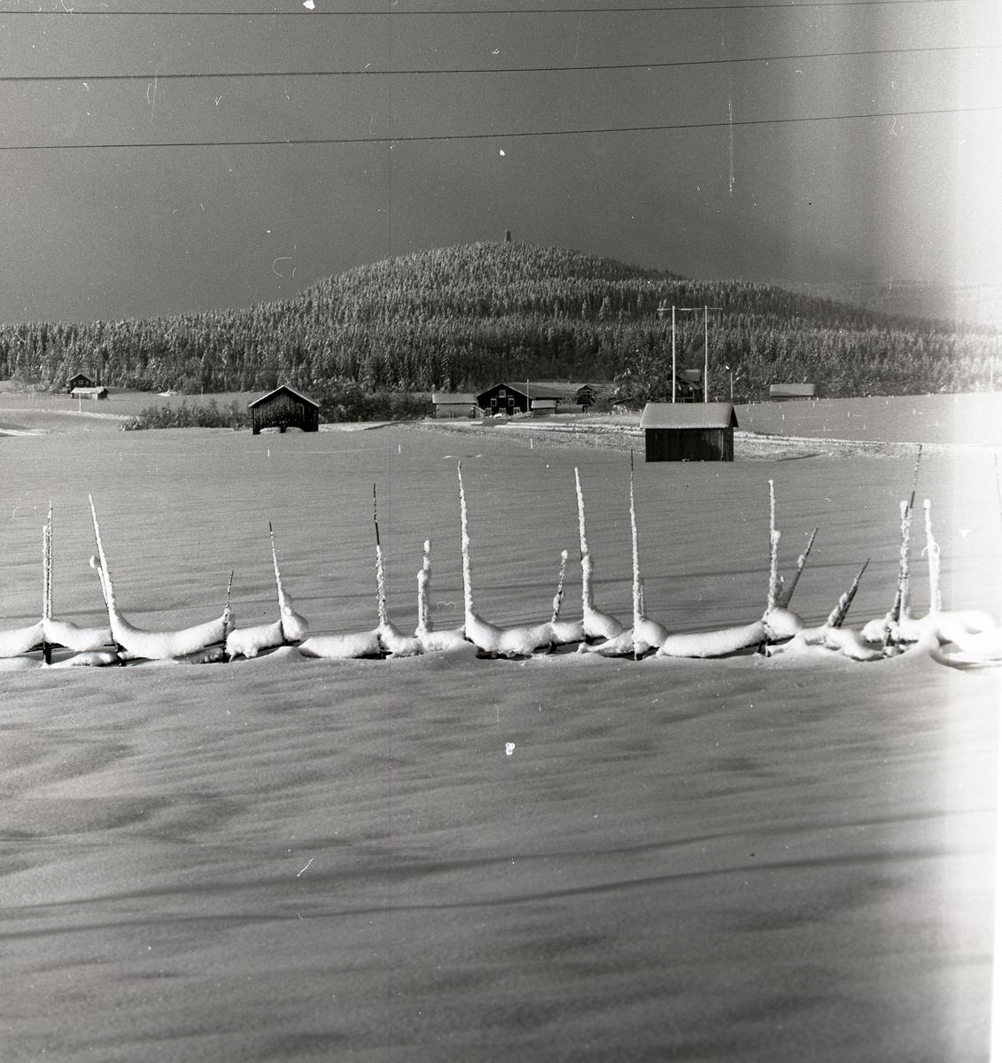 Snöklädd fastbandshage med Bullerberget i bakgrunden, Utegården i Glösbo i januari 1967.