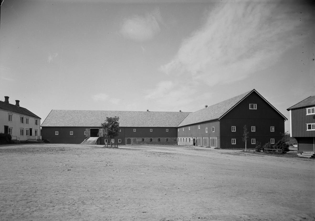 Mære landbruksskole