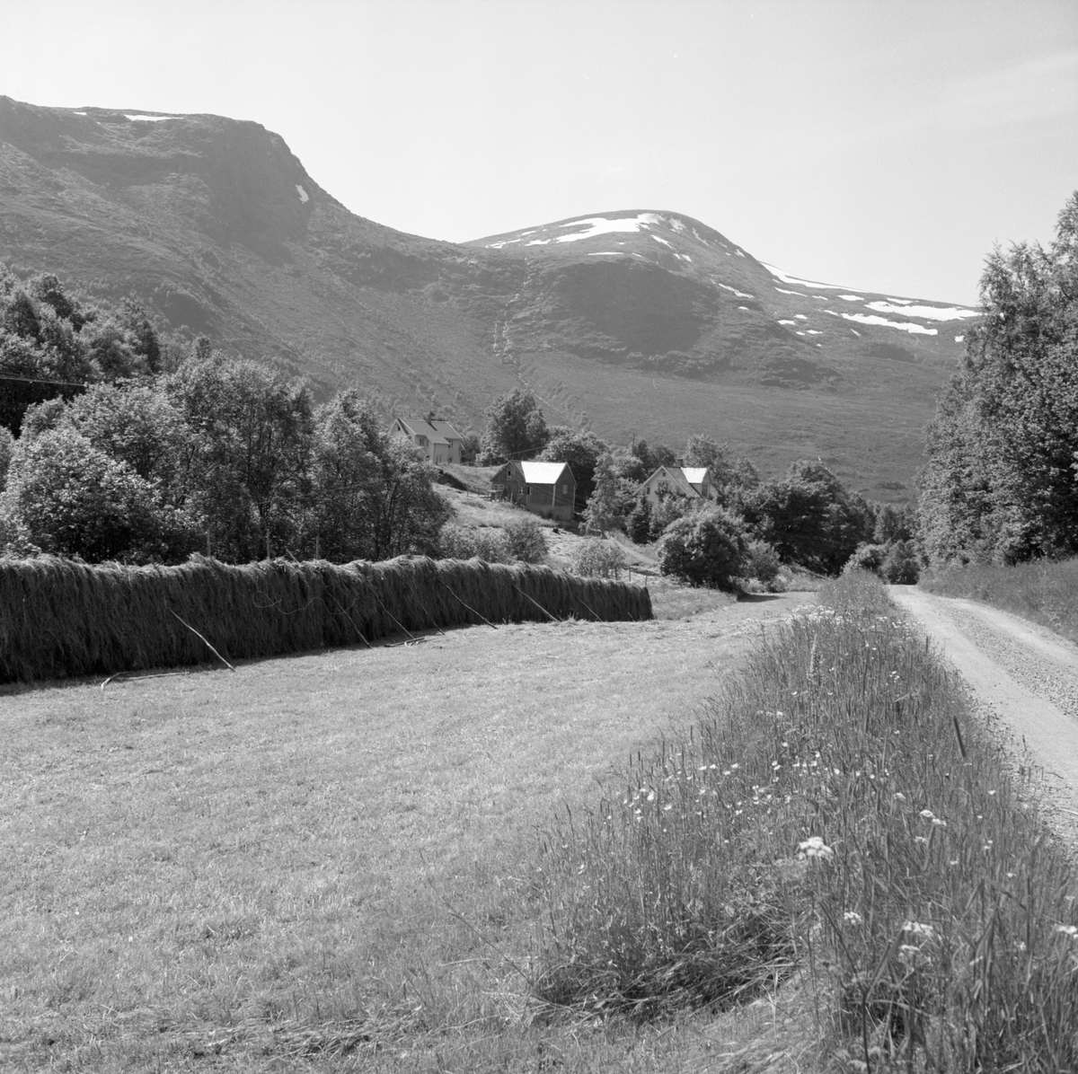 Et gårdstun på Vasset med Sulafjellet bak. Gamleveien fra Langevåg til Vedde i forgrunnen.