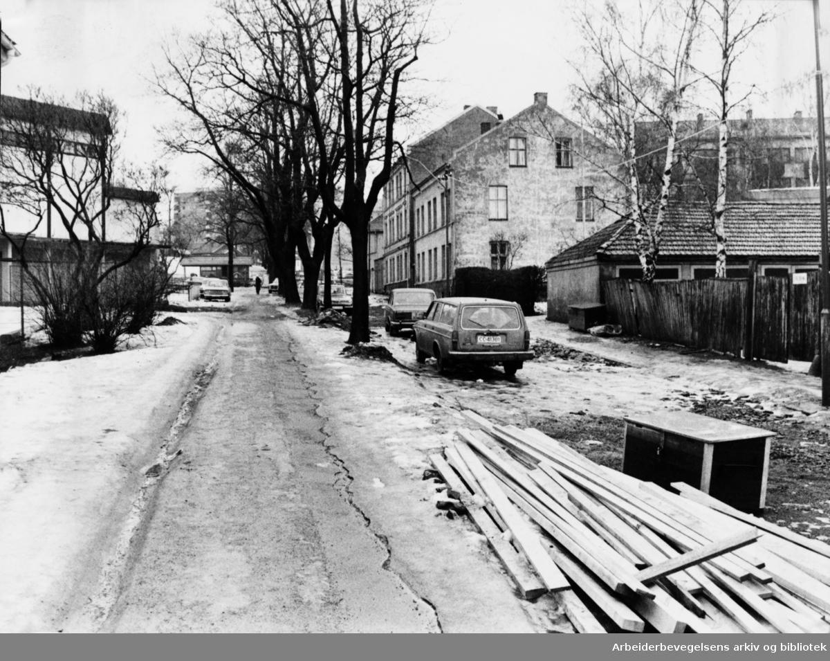 Bjølsengata skal pyntes opp. Mars 1979