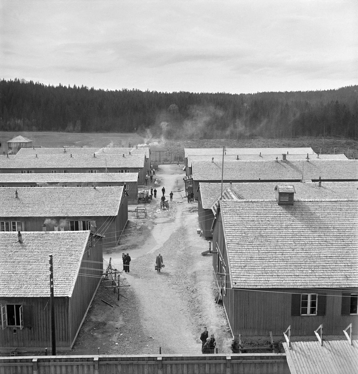 Grini fangeleir, 1945 (Foto/Photo)