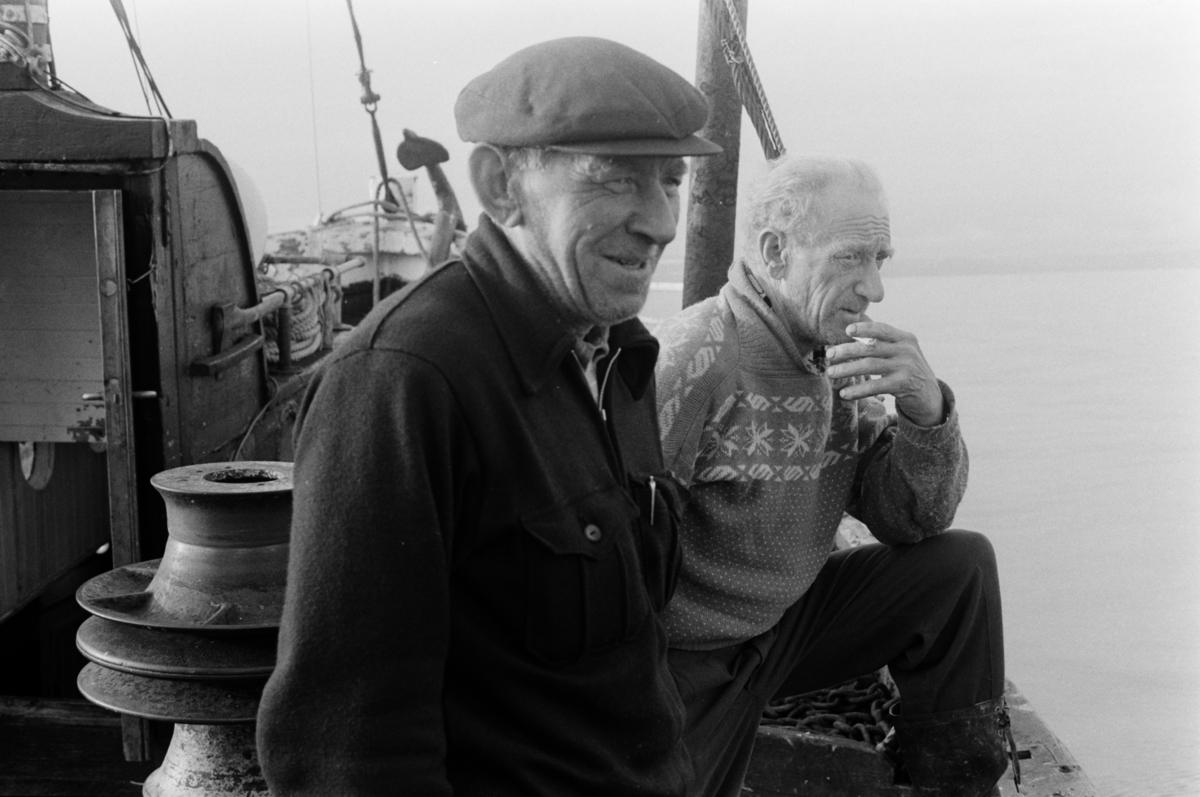 Karer på fiskeskøyte.