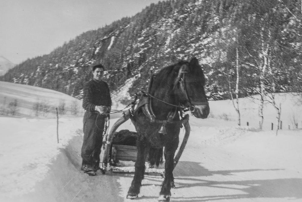 Brynjar Langjord og hesten Bruna, kjøring med slede på vinterføre.