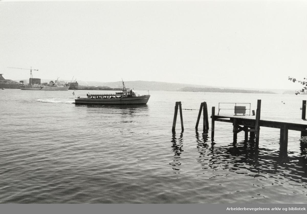 Dronningen, småbåthavna. Juli 1986