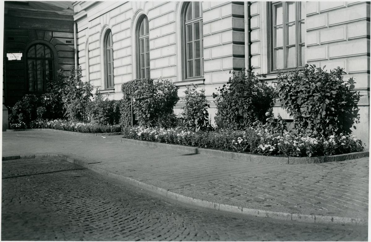 Plantering vid Stockholm Centralstation.