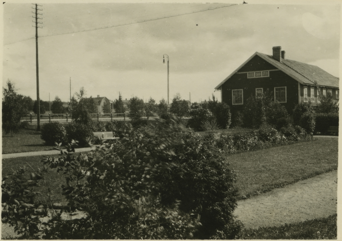 Stationsplanteringen på Skellefteå station.
