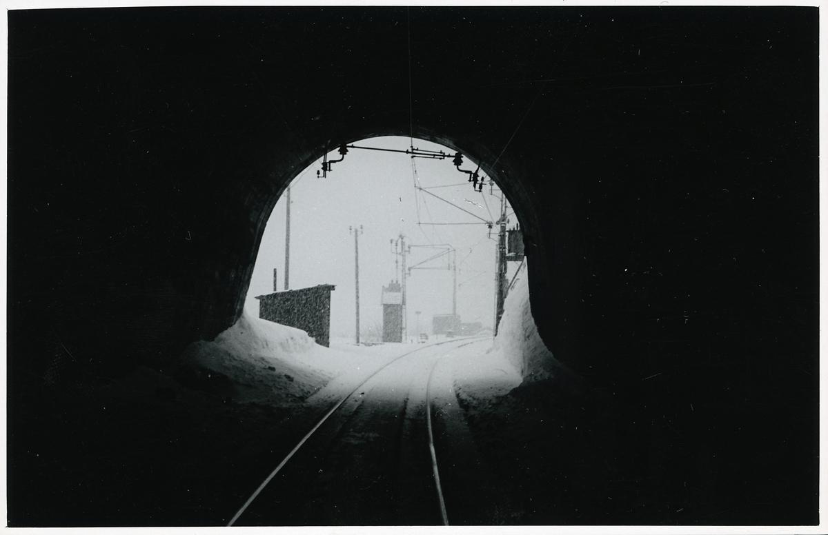 Nuoljatunneln, södra öppningen mot Abisko.