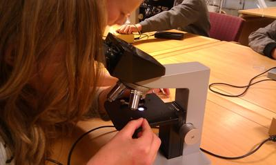 gjennom-mikroskopet-foto-Hege-Hauge-Tofte.jpg. Foto/Photo