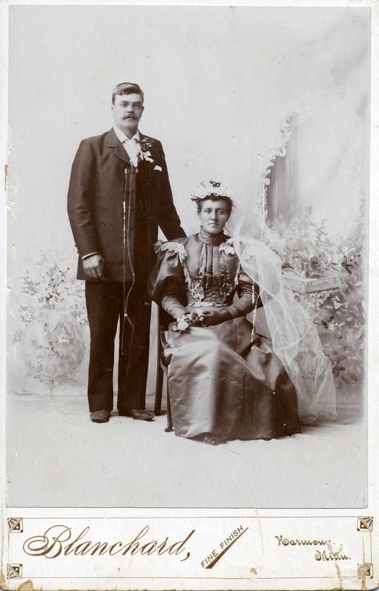 Parbiletre av Helga og Olav Hegg, USA