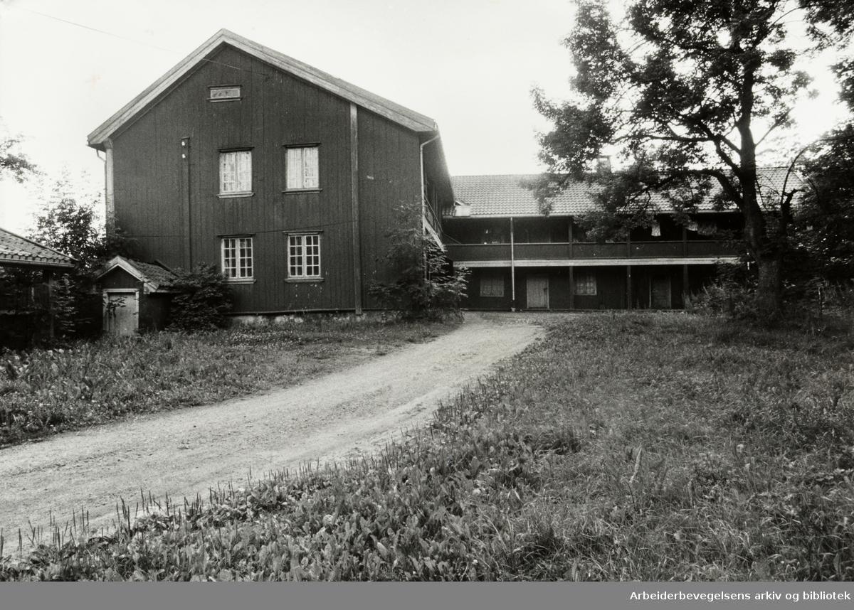 """""""Gjetemyren"""", Tåsenveien 2. Juli 1980"""
