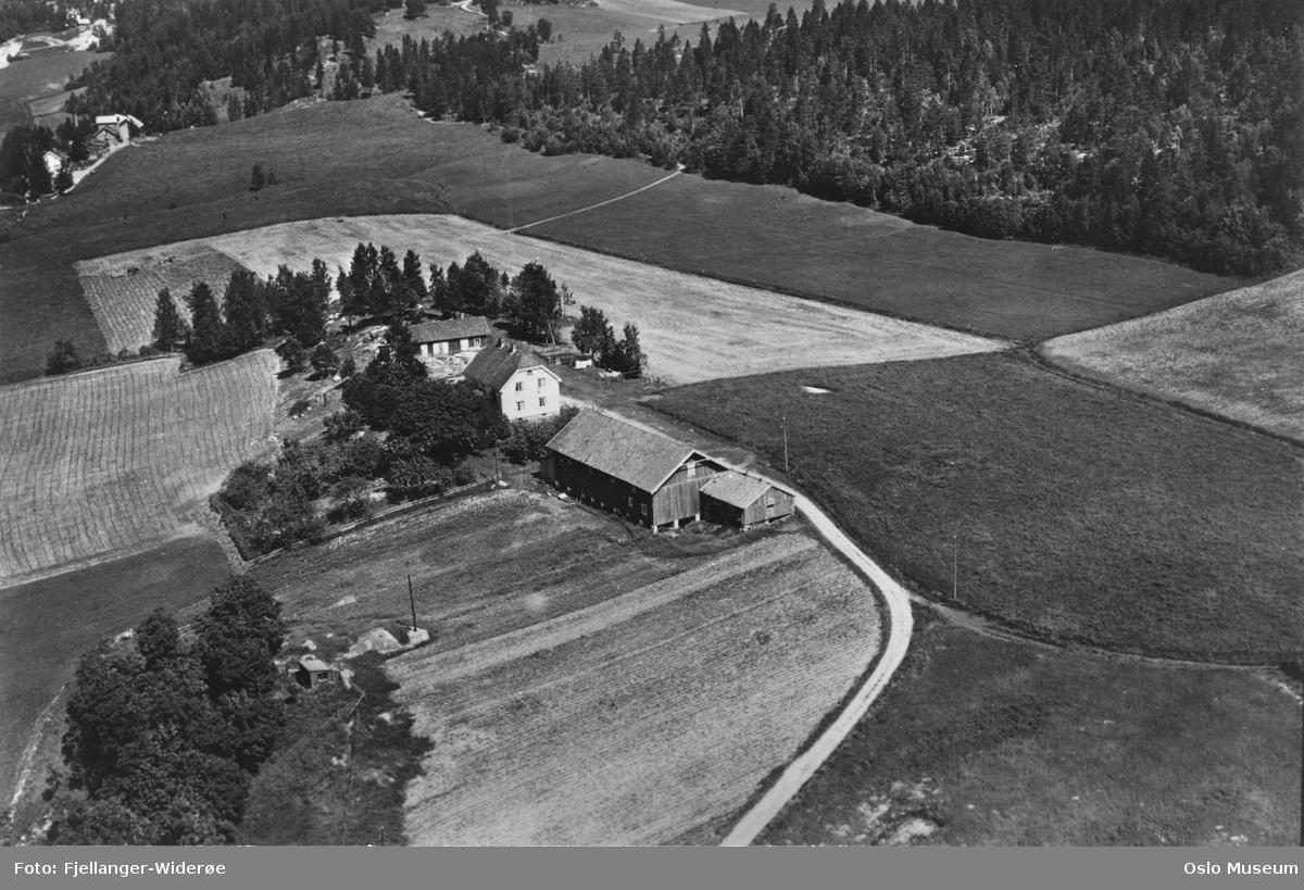 Bogerud gård, bolighus, uthus, kulturlandskap, jorder, vei, skog