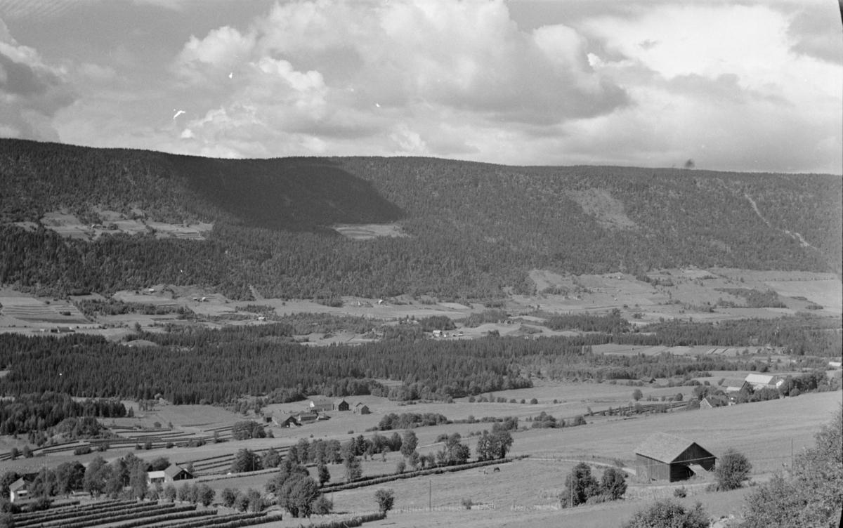 Utsikt fra Øverbygdsvegen ved Nordre Reistad