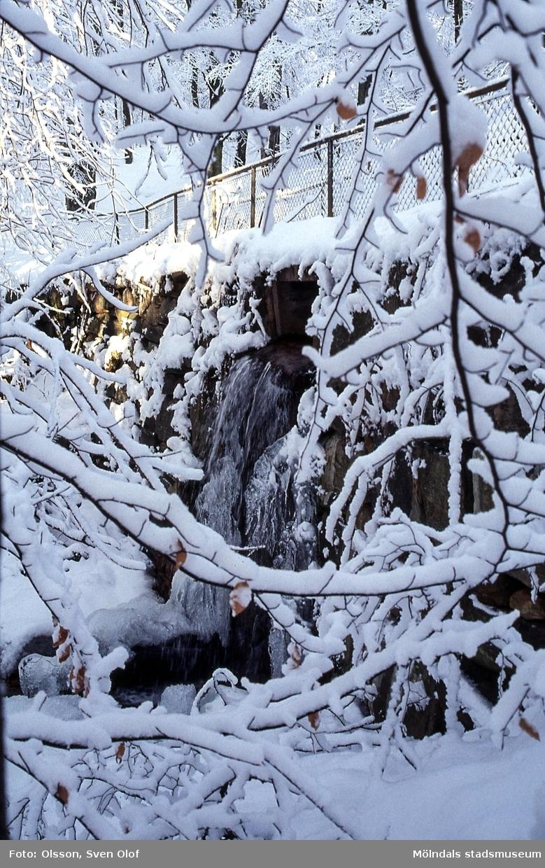 Svejserdalen i Lackarebäck, Mölndal, i december 2001. Utloppet från Kvarndammen i snö och rimfrost.