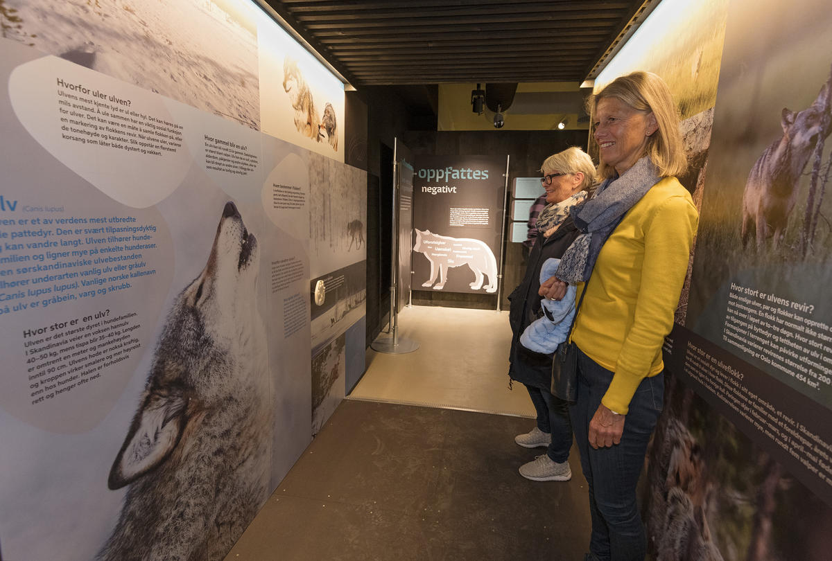 Fra åpningen av utstillingen Ulvetider. (Foto/Photo)