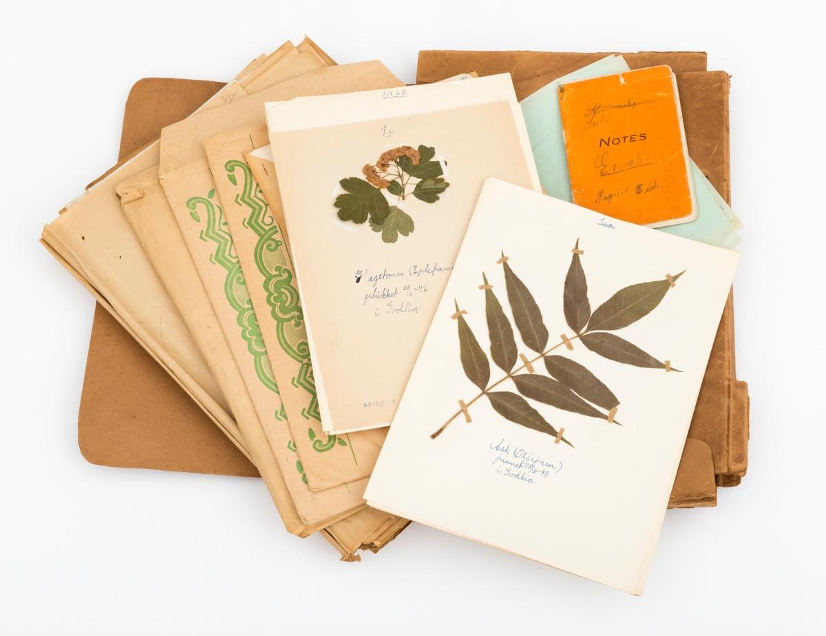 """Plantemappa består ett omslag og tre konvolutter med tilhørende planter. Plantene er beskrevet med navn, funnsted og årstall. Konvolutttene og omslaget er oppbevart i ei lysebrun pappmappe som har påskriften """"PLANTEMAPPE for"""". Mappa er cirka 30 cm bred, 43 cm lang og 4, 5 cm høy.  Med harbariet er vedlagt et hefte merket """"Skogkultur"""". Heftet består av en innledende del om skogkultur, men avsluttes med en plantesamling, """"merkeplanter"""".  Merkeplantene  sier noe om jordbunnen, og kan således fortelle noe om jordbunnens egnethet. Slik kan en """"merkeplantesamling"""" ha betydning for skogbruket."""