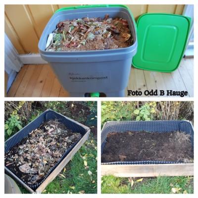 Plastbøtte med tett lokk og kran nederst fylles med hage- og kjøkkenavfall og brukes til bokashikompostering.