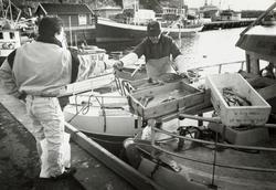 Havna. Fiskehandel. November 1992