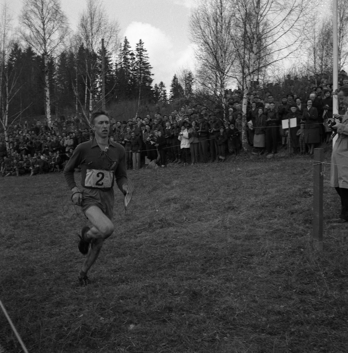 """Lennart Öberg springer sista sträckan på tiomilaorienteringen och Arboga Orienteringsklubb vinner inför en stor publik. april 1953  Start: Malmköping. Mål: Bränninge, Södertälje.  Bilder, från detta tillfälle, finns i Reinhold Carlssons bok """"Arboga objektivt sett""""."""