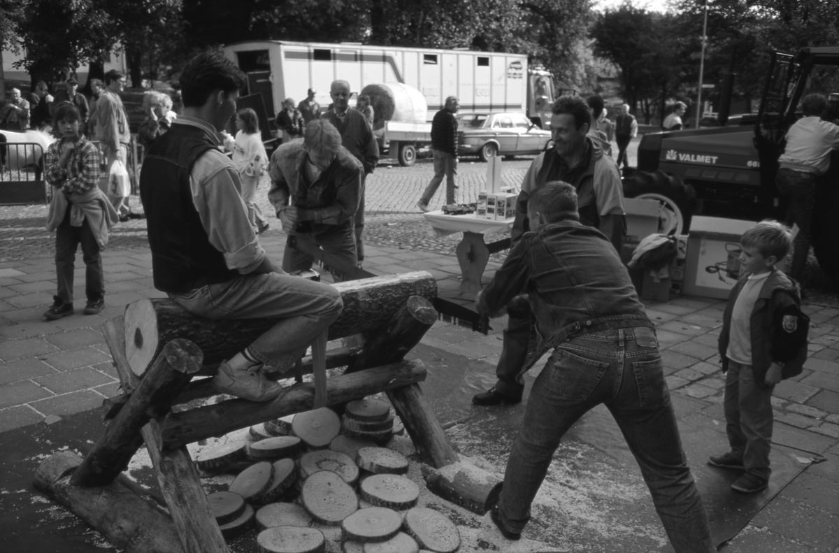 """Evenemanget """"Bonde på stan"""" på Järntorget. Två unga män hjälps åt att såga. En traktor ses till höger. I bakgrunden, till vänster, ses en ponny i en liten hage. En lastbil är parkerad intill kyrkparken. Människor strosar mellan aktiviteterna."""