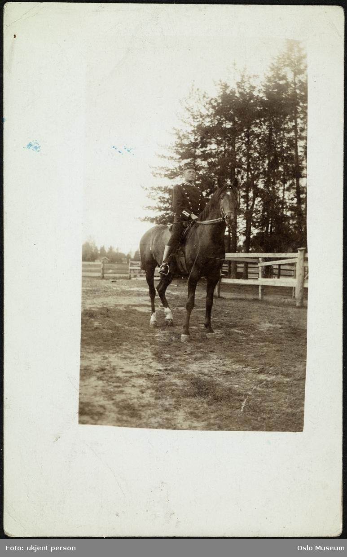 hest, mann, rytter, kavalerist, uniform