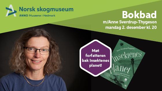 Insektenes planet - bokbad med Anne Sverdrup-Thygeson