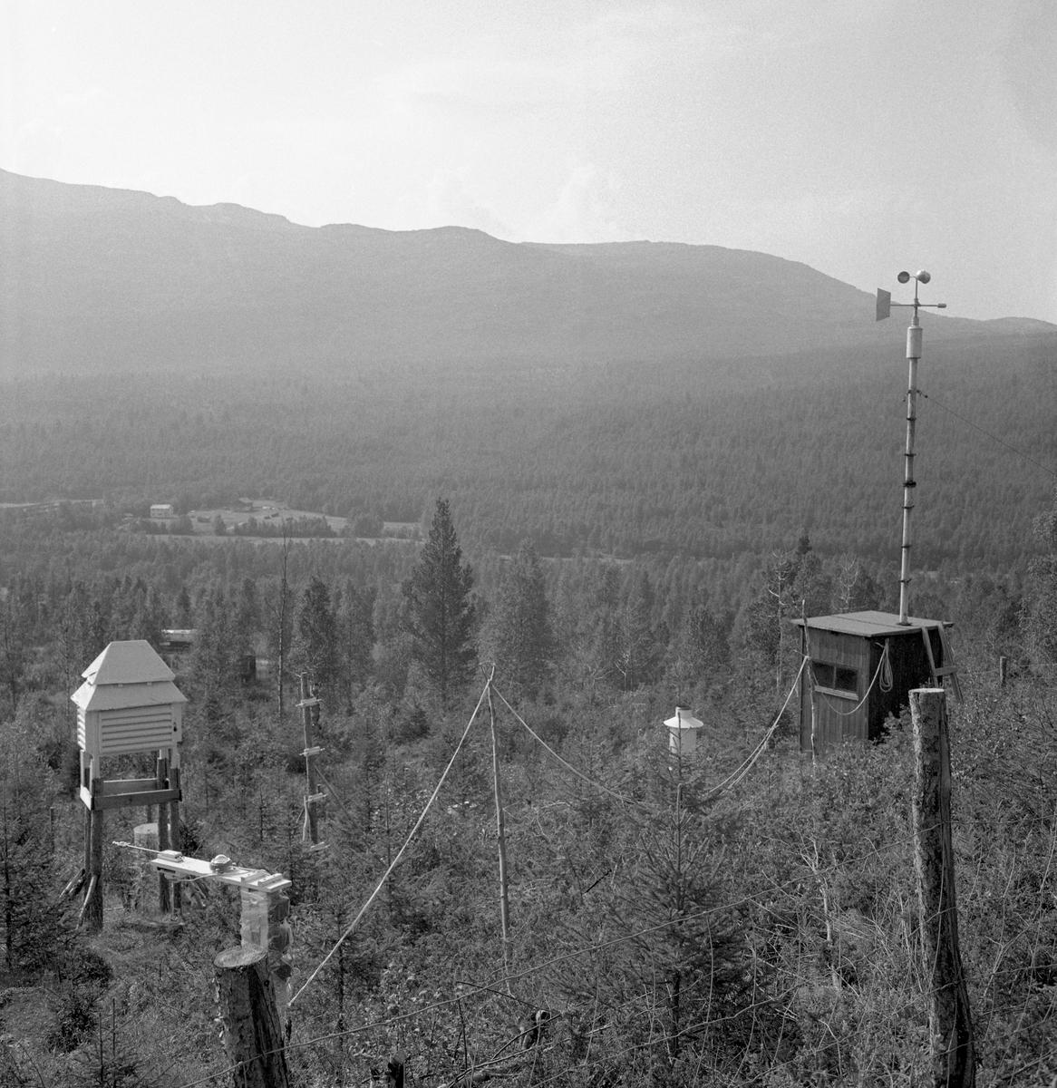 Klimaregistrering, antakelig etablert av Det norske skogforsøksvesen i 1950- eller 60-åra. Fotografiet er tatt i en vid da, der skogvegetasjonen bare brytes av et gardsbruk omgitt av forholdsvis små engarealer ved dalbotnen i bakgrunnen. Klimaregisteringsutstyret later til å være plassert i utkanten av et plantefelt med gran, som var skjermet mot beitedyr ved hjelp av et trådgjerde (i forgrunnen). Bak gjerdet ser vi blant annet et stativ med en hygrotermograf som registrerte skiftende temperaturer og vekslinger i luftfuktighet, en nedbørsamler og en stasjon som dokumenterte variasjoner i vindstyrke. Poenget her må sannsynligvis ha vært å sammenholde meteorologiske data fra de nevnte instrumentene med vekstutviklinga i ungskogen på det omkringliggende plantefeltet. Den mest kjente arenaen for slik forskning i Norge var fjellområdet Hirkjølen i Ringebu kommune i Oppland, der Elias Mork skal ha hatt 17 slike stasjoner i drift, men det er usikkert om dette fotografiet kan være derfra.