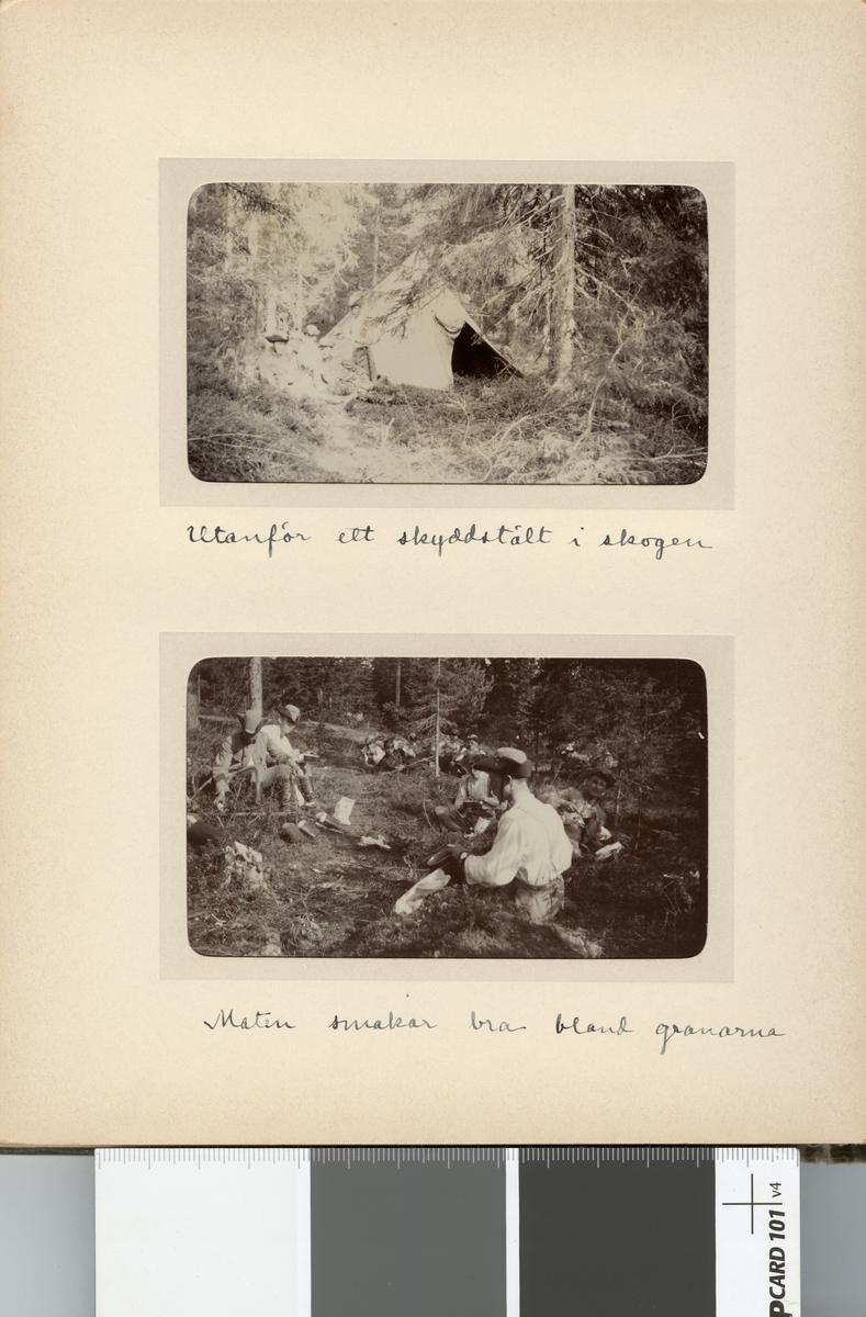 Måltid i skogen.