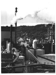 Nye Tofte = Tofte Cellulosefabrikk i Hurum