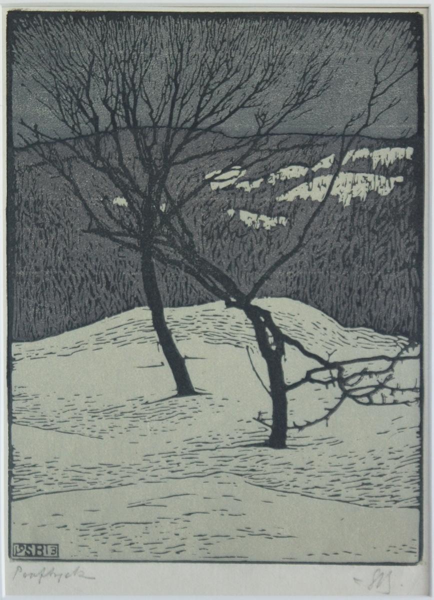 Vinterbild [Träsnitt]