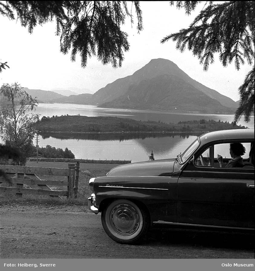 bil, kvinne, utsikt, gjerde, jorde, hesje, fjord, holme, fjell
