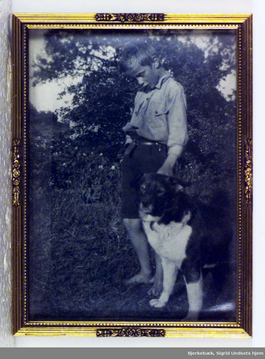 Portrett av Sigrid Undsets sønn Anders Castus Svarstad sammen med en hund.