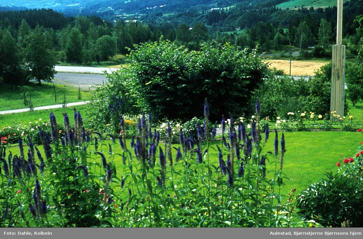 DOK:1972, Aulestad, hage, blomster,